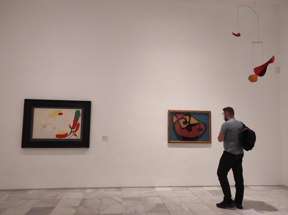 Visitante en una de las salas de la exposición