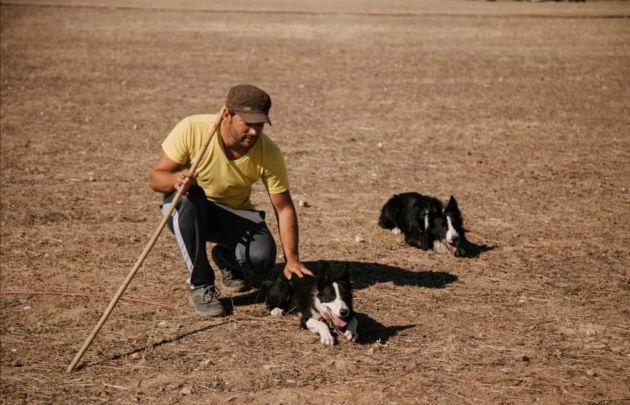 Daniel Illescas durante el entrenamiento de perros para pastoreo