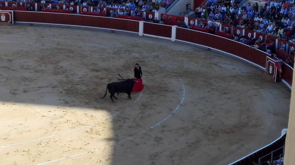 Finito de Córdoba, durante su faena al primer toro de la Feria Taurina 2021