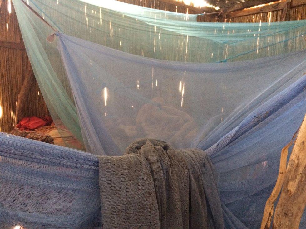 Mosquiteras bajo las que duermen para protegerse de la malaria