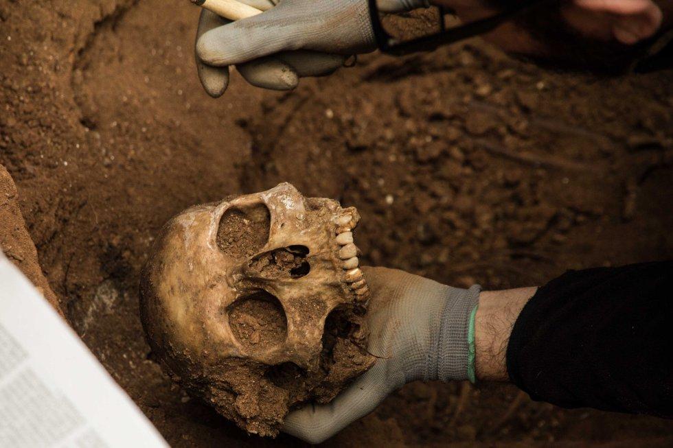 Uno de los antropólogos sostiene en la mano los restos de uno de los cráneos hallados en las fosas comunes exhumadas en el cementerio.