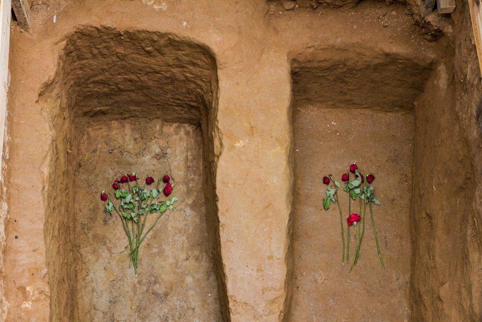 En las fosas comunes del cementerio de Guadalajara, los restos óseos hallados son sustituídos por rosas rojas.