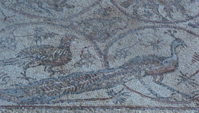 Mosaico bizantino en el yacimiento de San Helarion, Franja de Gaza