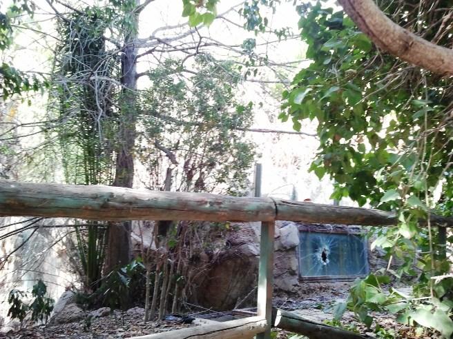 Desde el exterior se observa cómo algunas de las instalaciones que albergaban animales están rotas