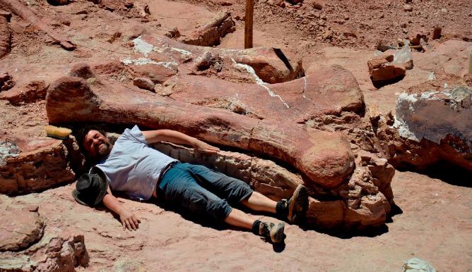 Hallan En Argentina Los Restos Del Dinosaurio Más Grande Jamás Descubierto Sociedad Cadena Ser