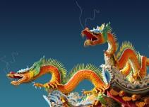 Descubre qué animal eres en el horóscopo chino