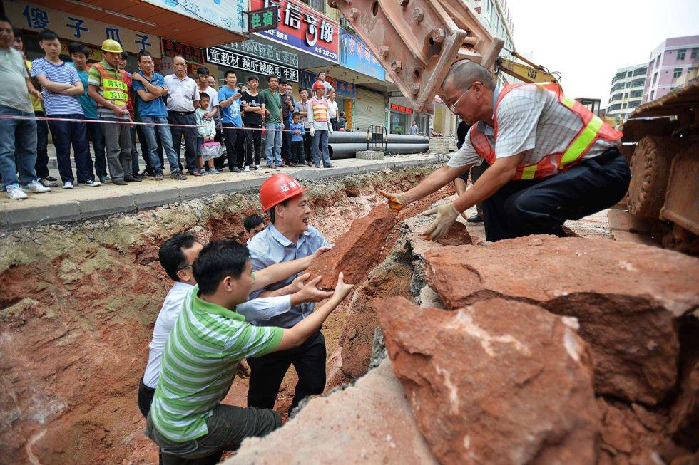 Según informó la agencia oficial Xinhua, por el momento se desconoce a qué especie de dinosaurio pertenecen los huevos hallados, que han sido trasladados al museo arqueológico local para ser examinados con unas mejores medidas de conservación.