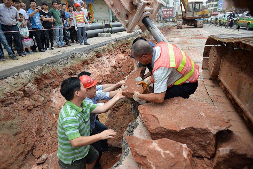 Con este nuevo descubrimiento, Heyuan se reafirma como un destacado yacimiento de huevos dinosaurio, ya que en esa ciudad se han desenterrado más de 17.000 desde 1996, incluido el mayor hallazgo hasta el momento de este tipo de fósiles, de más de 10.000 unidades, que fue encontrado en 2005.