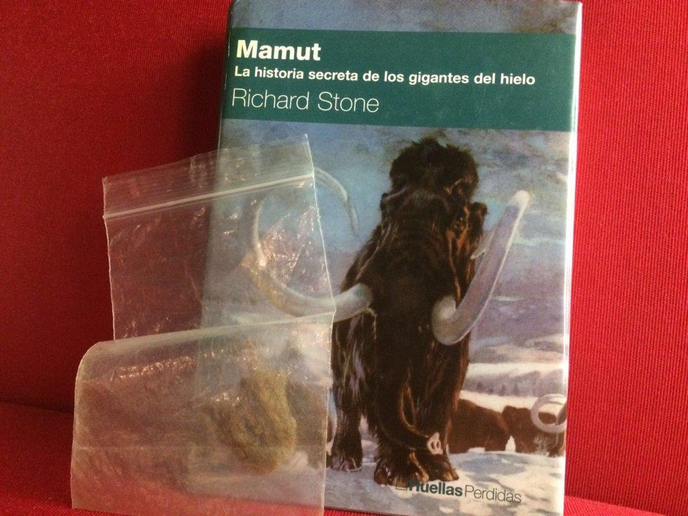 Pelo de mamut y 'Mamut'.