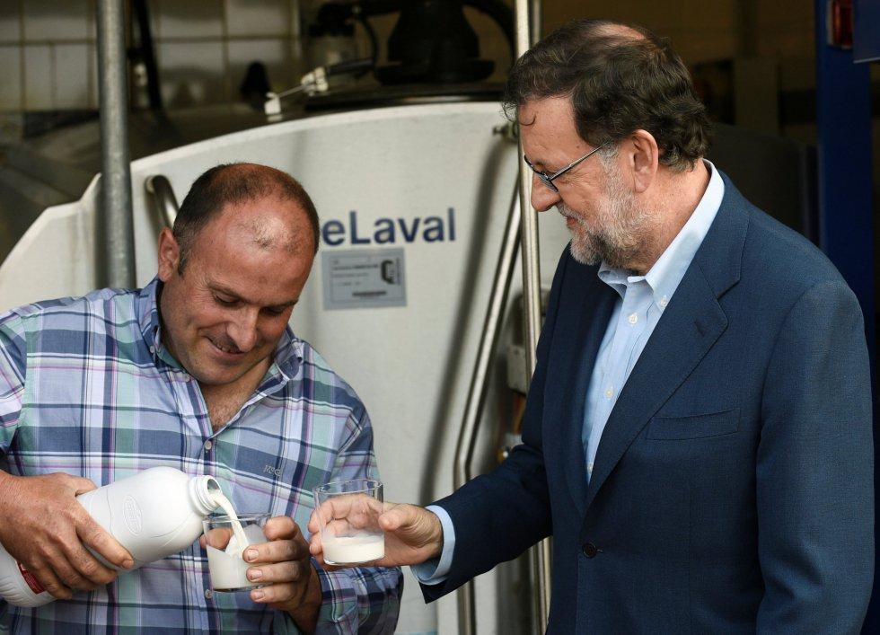 Mariano Rajoy en su visita a la ganadería Carbayed, en Asturias, durante su acampaña electoral.
