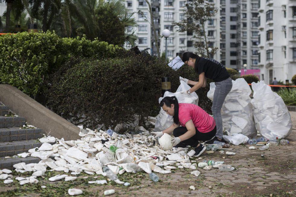 Varios voluntarias ayudan en la retirada de escombros tras el paso del tifón 'Hato' por Heng Fa Chuen, en Hong Kong (China)