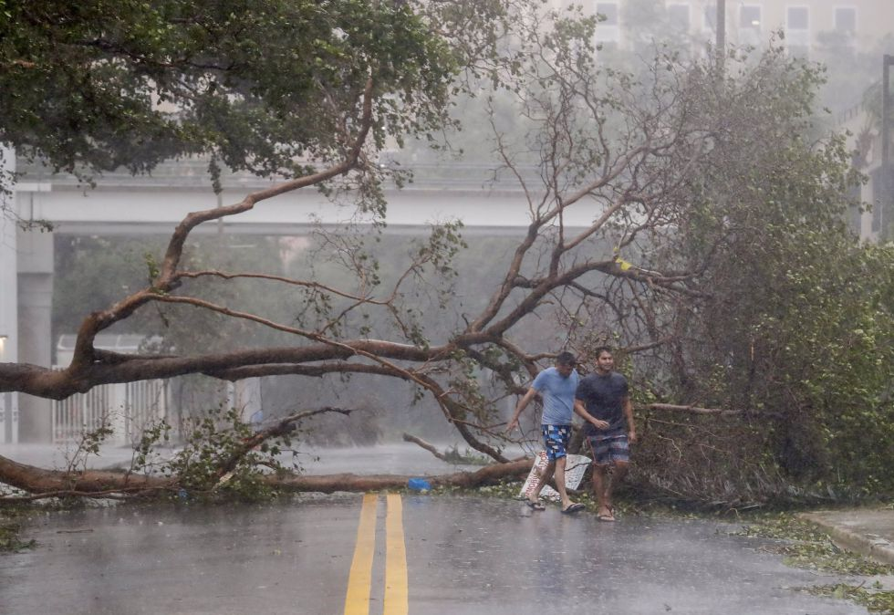 Unos árboles caídos inhabilitan la avenida Brickell tras el huracán Irma a su paso por Florida (EEUU).