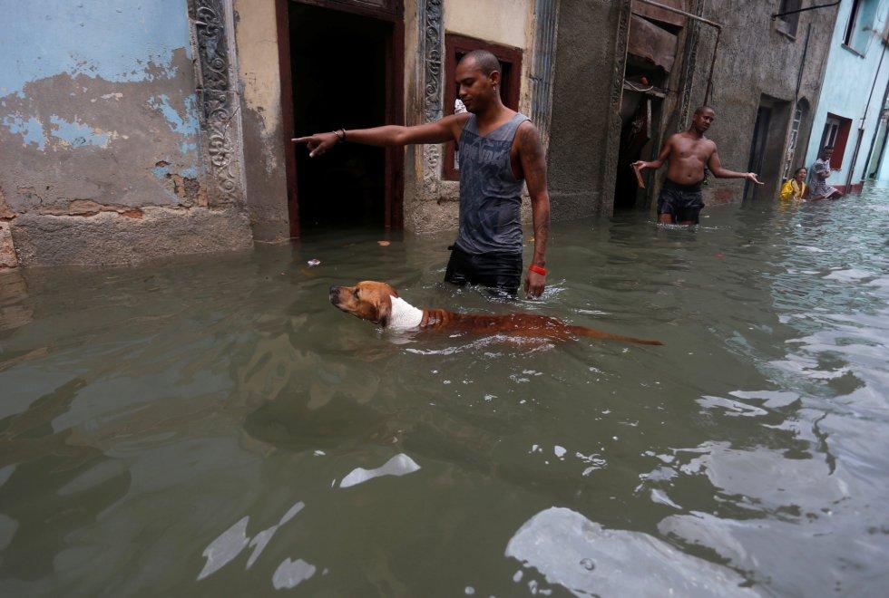 Un hombre da indicaciones a su perro, que nada por una calle inundada.