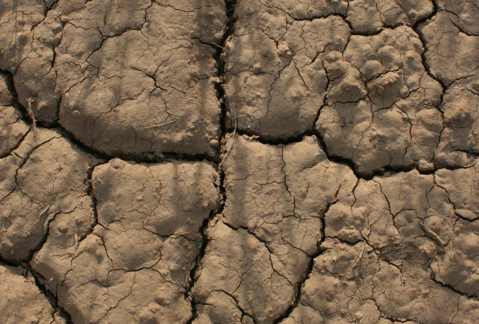 La peor sequía en España en décadas
