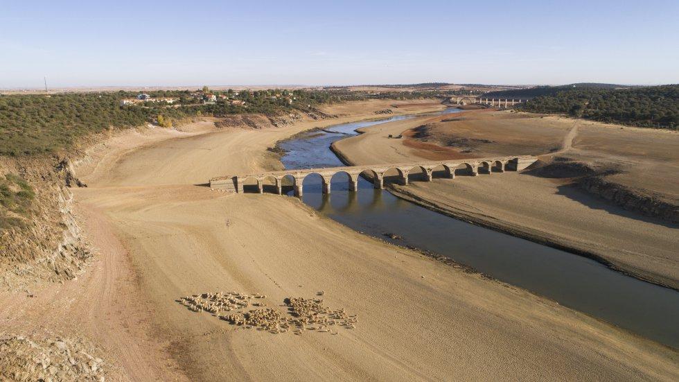 La bajada del nivel de las aguas a causa de la sequía en el embalse de Ricobayo deja al descubierto el puente antiguo de la Estrella.