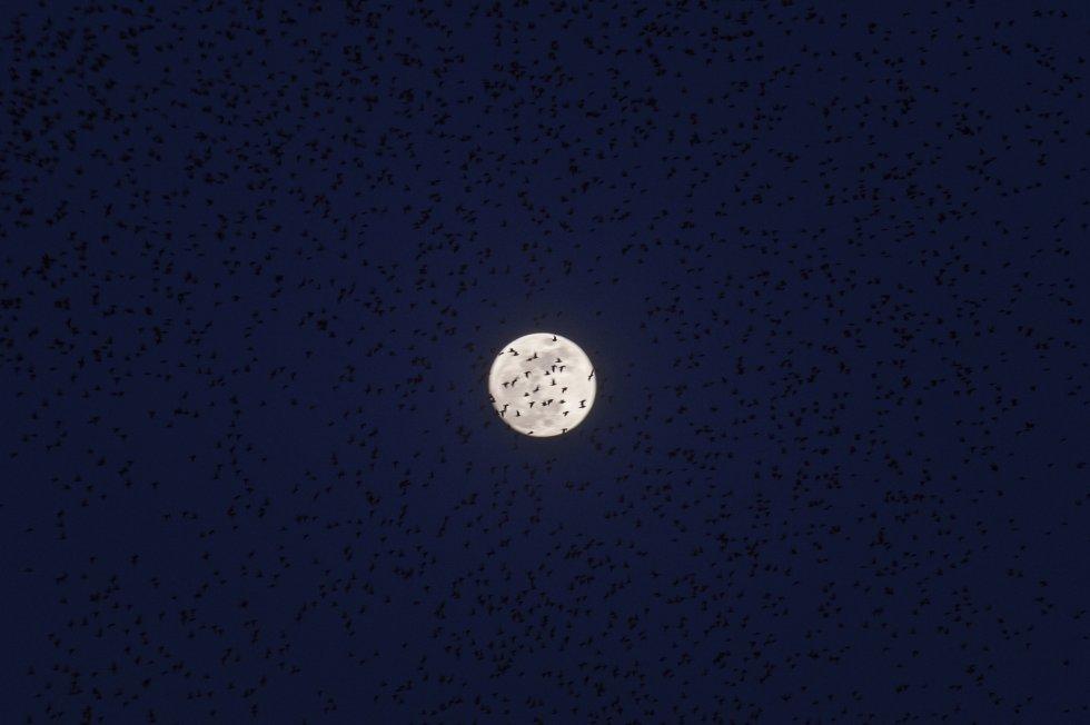 La superluna vista desde Roma, la capital de Italia.