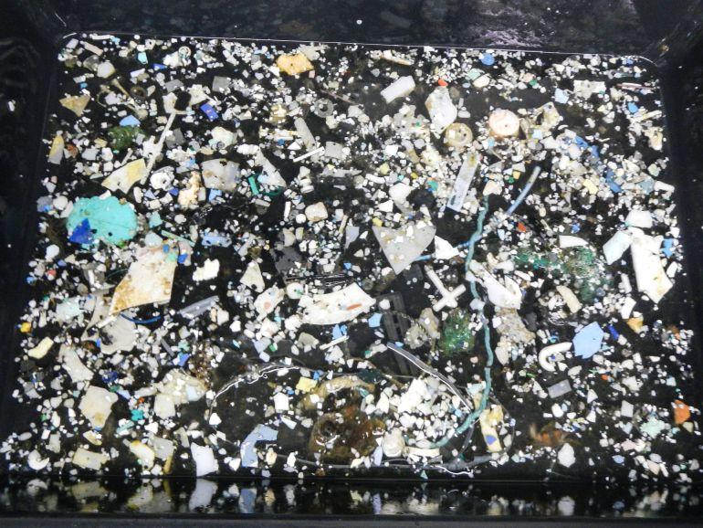 Hay mil veces más microfibras de plástico en el mar. Una investigación  realizada por científicos de Estados Unidos detecta una gran cantidad ... ac27705902dc