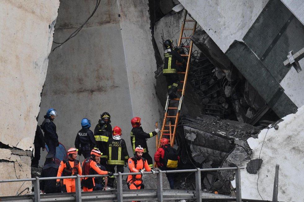 Varios trabajadores de los servicios de emergencia buscan entre los escombros.