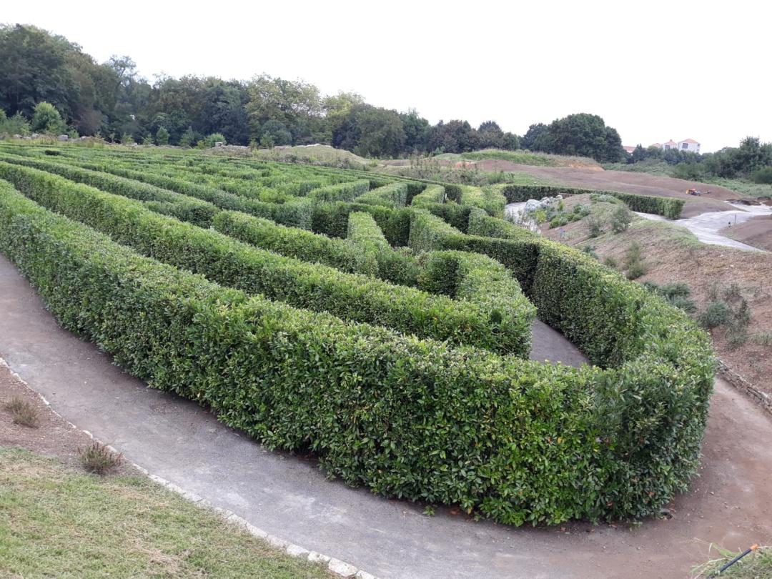 El Botanico Inaugura Bioma Boreal Americano Y Laberinto De Laurel
