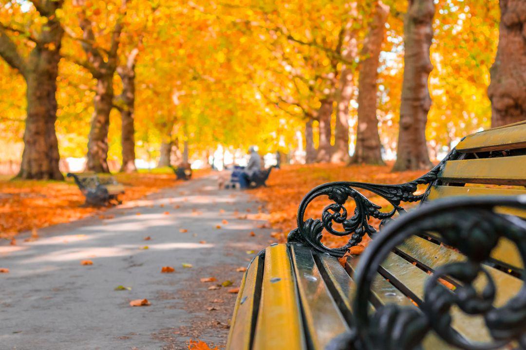 bd47a1df1 El equinoccio de otoño  qué es y cuándo llega