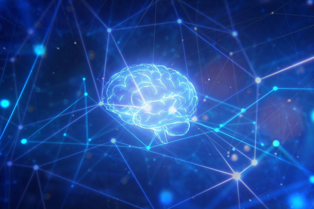 Resultado de imagen para células cerebrales utilizando un smartphone