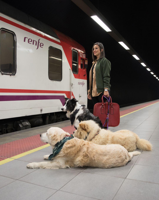 Renfe quiero viajar con mi perro | Radio Elche | Cadena SER