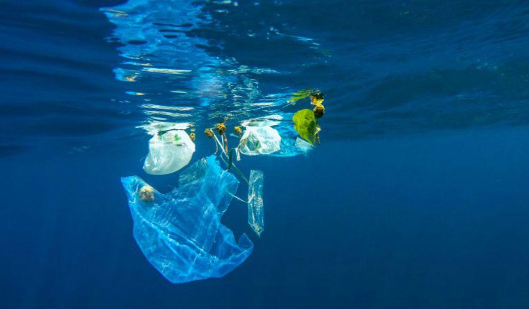 Resultado de imagen de plasticos mar