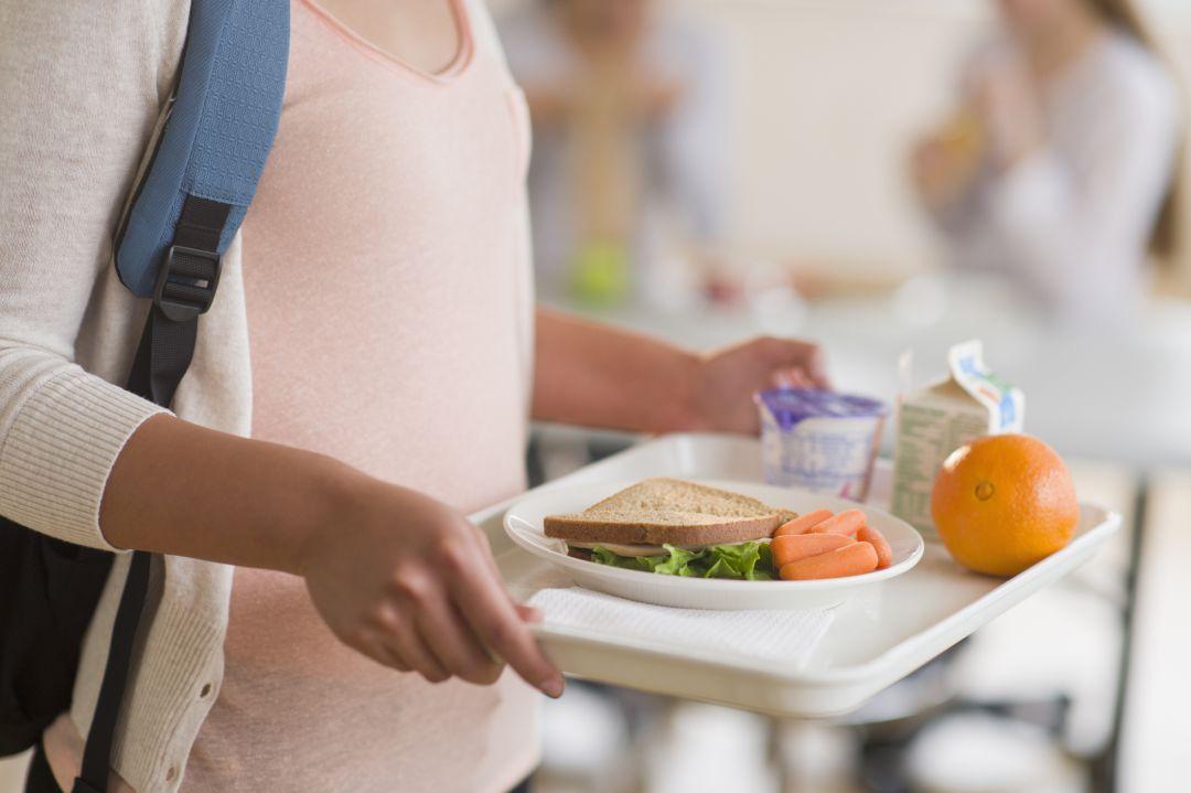 Nuevos criterios de calidad para los comedores escolares ...