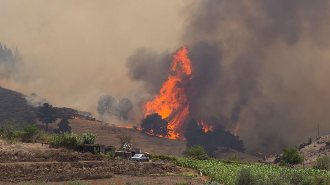 El fuego de Gran Canaria arrasa sin control y obliga a evacuar a 9.000 vecinos de la zona