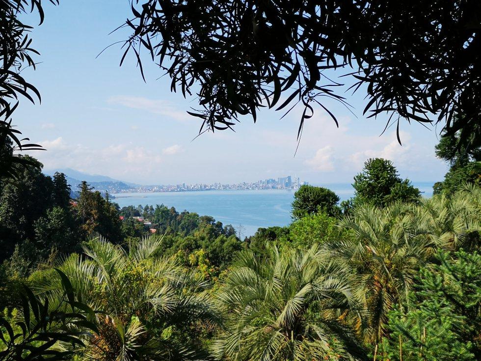 Muy cerca de la ciudad, apenas a 9 kilómetros del centro, está una visita indispensable si estás en Batumi. El jardín botánico, fundado en 1912, tiene más de 5.000 especies de todos los continentes gracias al clima subtropical de la zona.