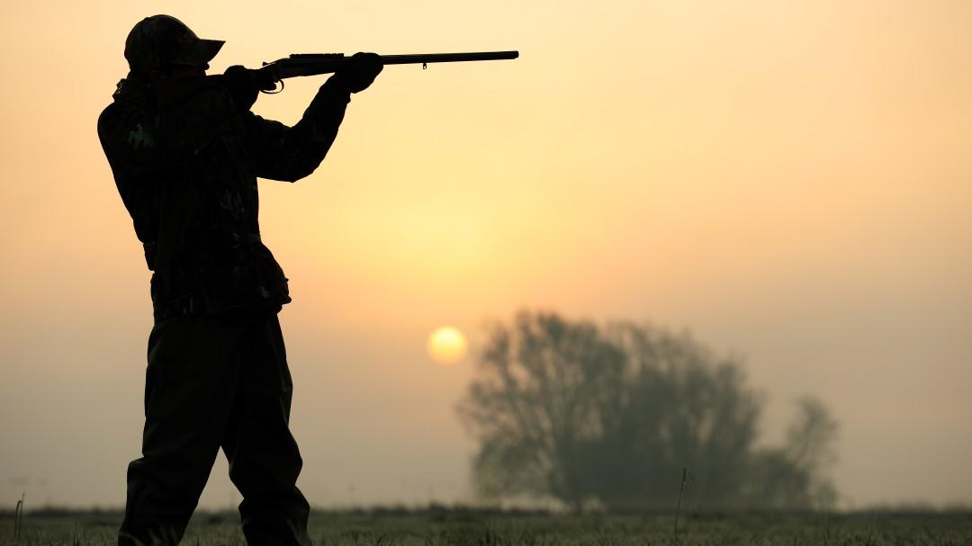PP, Ciudadanos y Vox acuerdan promocionar la caza en los colegios de Andalucía
