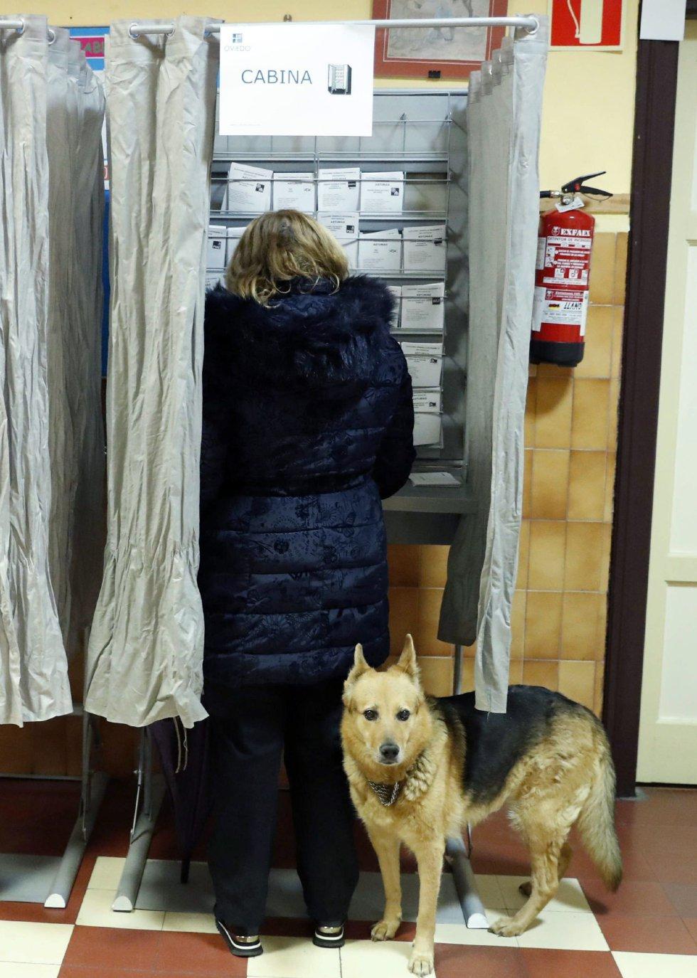 Una mujer acompañada de su perro elige sus papeletas en un colegio electoral de Oviedo