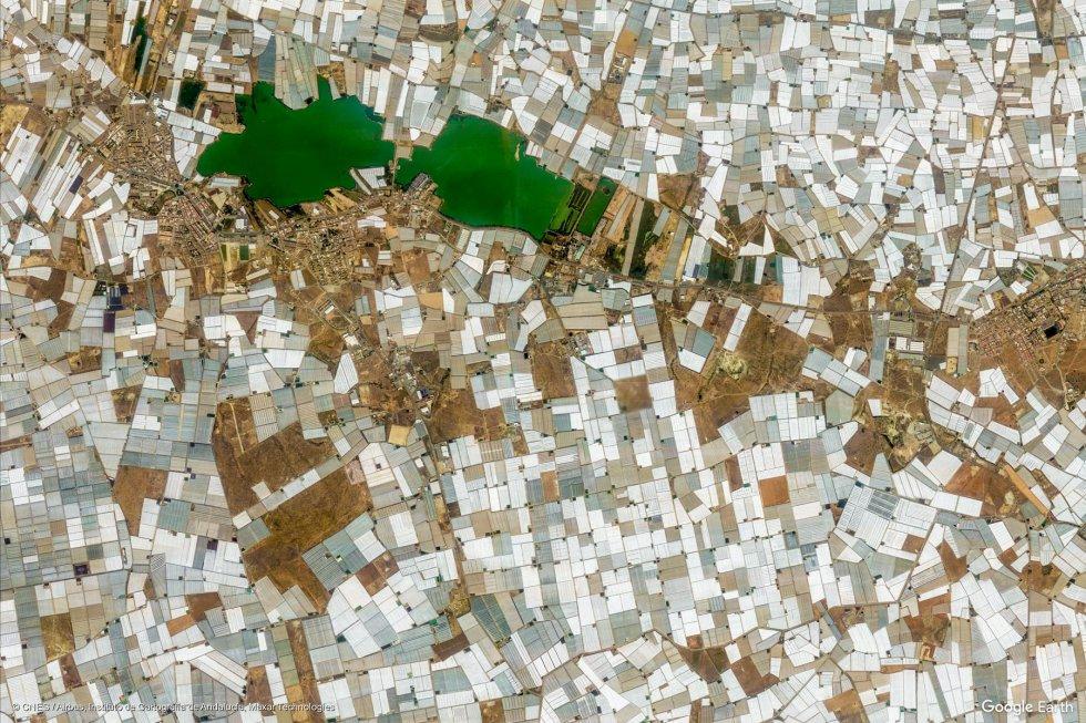 El Ejido (Almería). Los invernaderos cubiertos de plásticos blancos de los campos de la localidad almeriense, desde el satélite.