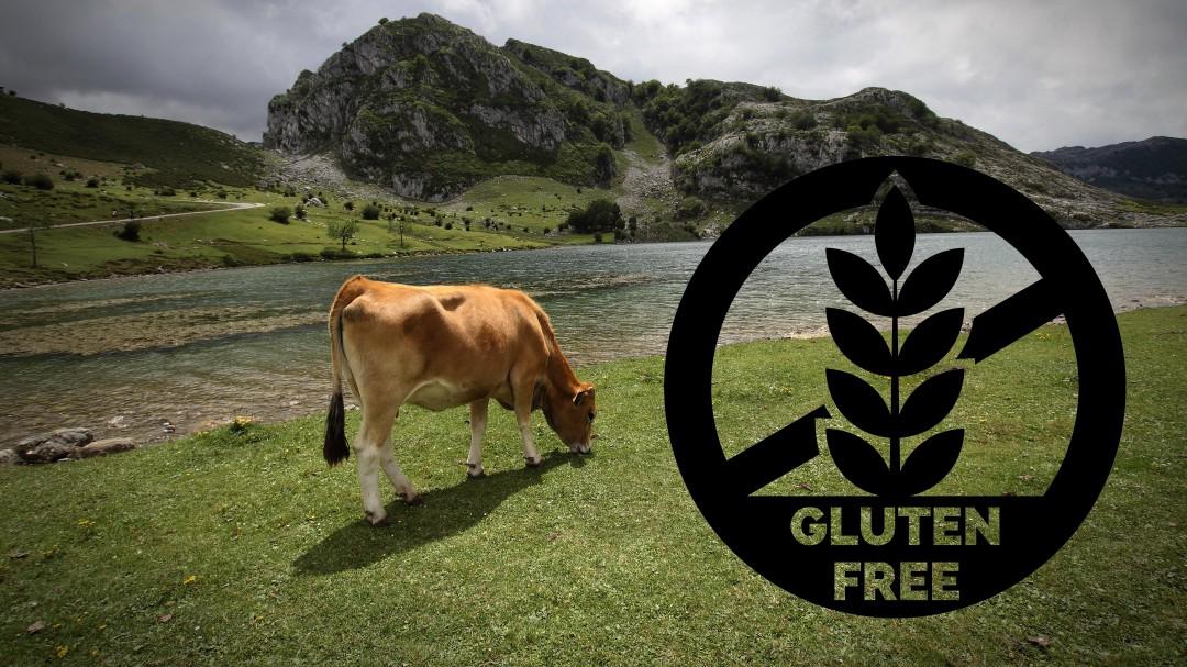 El paraíso de los celiacos: la localidad española que es 100% libre de gluten