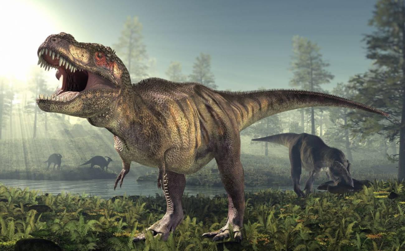 Así puedes meter un Velocirraptor o Tiranosaurio Rex en tu salón: Google  anuncia el retorno de los dinosaurios   Ciencia y tecnología   Cadena SER