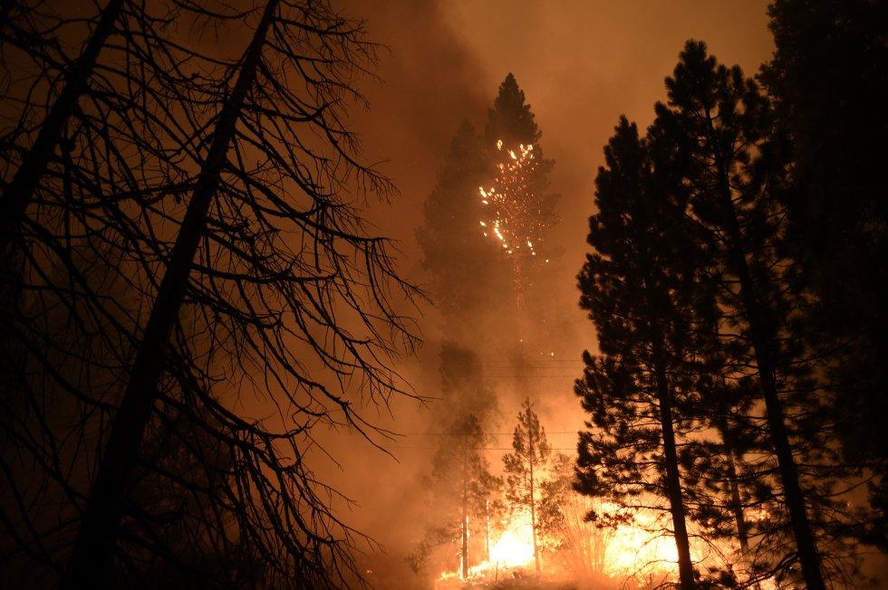 FOTOGALERÍA   Las impactantes imágenes de los incendios de California y la costa oeste de Estados Unidos