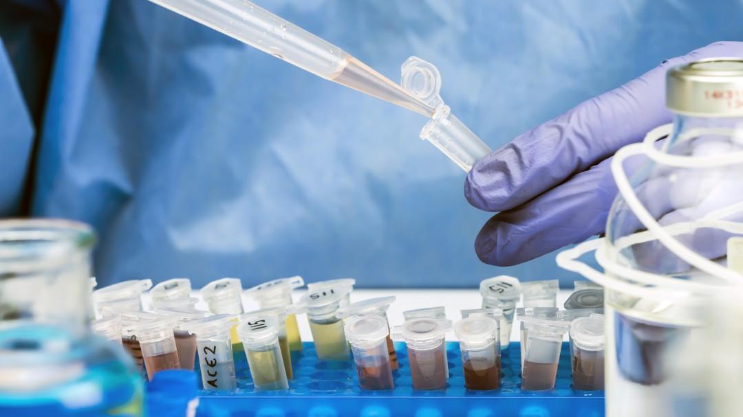 """Un fármaco oral logra suprimir """"por completo"""" en 24 horas la transmisión del coronavirus"""