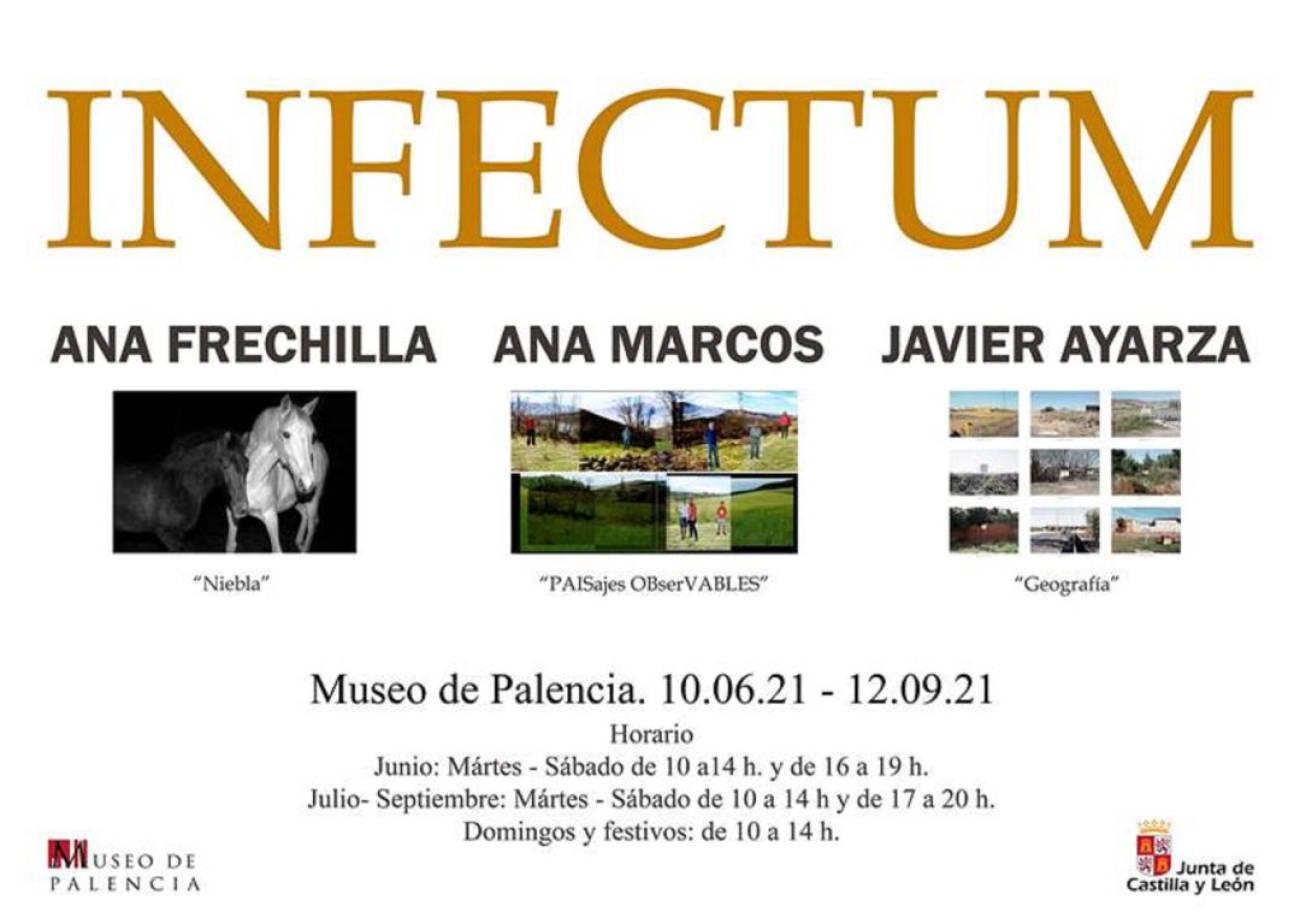 El Museo de Palencia acoge 'Infectum' una muestra con creaciones artísticas  contemporáneas de la provincia | Radio Palencia | Actualidad | Cadena SER