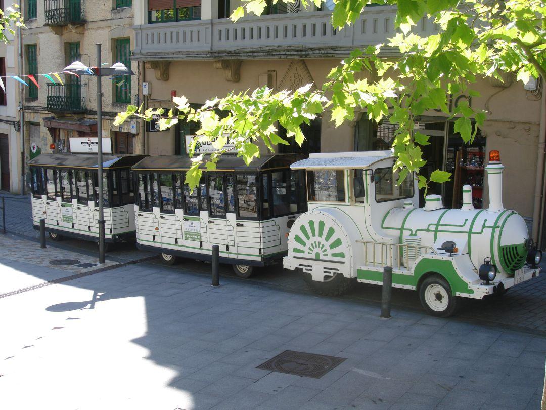 Oiasso continúa este agosto con una intensa agenda de actividades, el tren verde es una de ellas