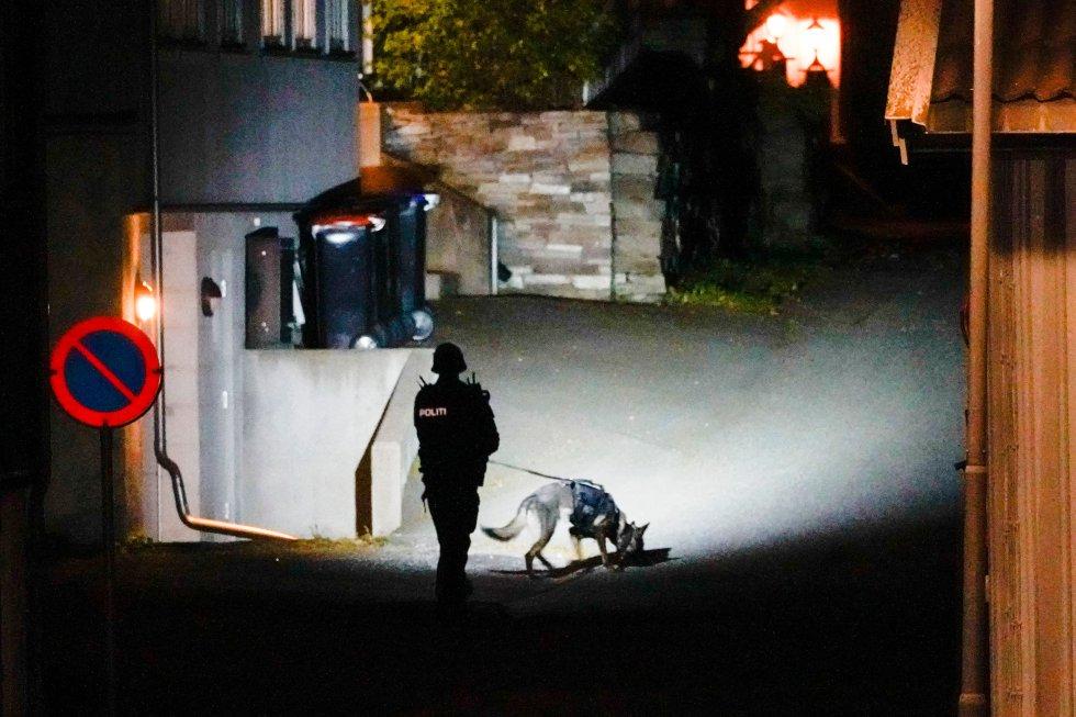 Fotogalería: las imágenes del ataque con arco y flechas de Noruega